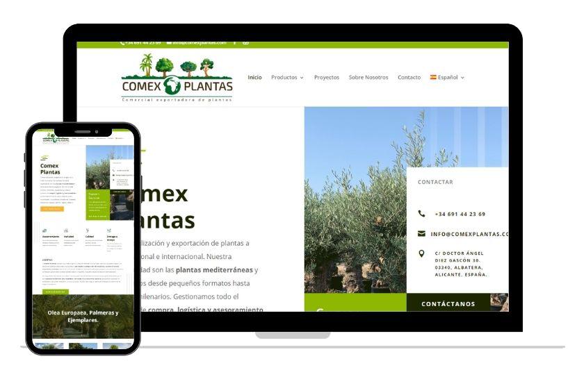 Ordenador mostrando diseño web corporativo